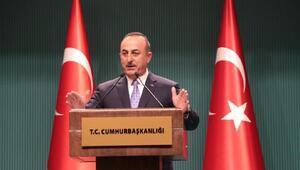 Çavuşoğlu: Barış Pınarı operasyonuna ara verdik