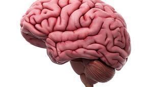 Bu aktivite beyin fonksiyonlarını geliştiriyormuş