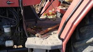 Tarlada traktörle çift sürerken öldürüldü