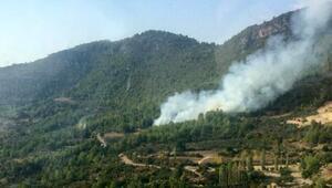 Gündoğmuşta orman yangını