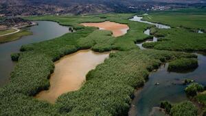 Türkiyede 3,2 milyon hektar alana özel statülü koruma