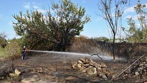 Antalyada otluk ve çalılık alanda yangın