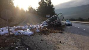 Fındık yüklü kamyon devrildi: 2 yaralı