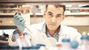 Prostat kanserinde büyük umut: Öldüren hücreyi öldürdü