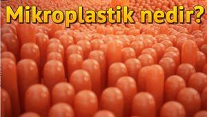 Mikroplastik nedir