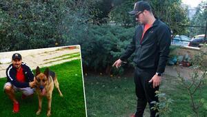 Evin bahçesindeki köpek kurşunlanarak öldürüldü