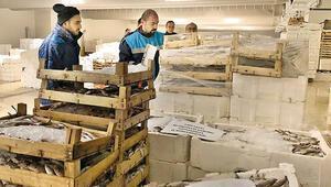 8.5 ton balığa el konuldu