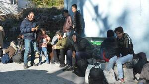 Minibüsten 46 kaçak göçmen çıktı