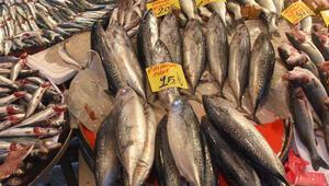 Palamutta büyük oyun Satın aldığınız balığa dikkat edin...
