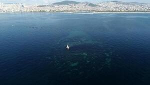 İstanbulda depremlerle battı... Vordonisi adası havadan fotoğraflandı