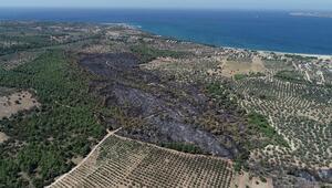 Çanakkaledeki 52 orman yangınında 222 hektar alan kül oldu