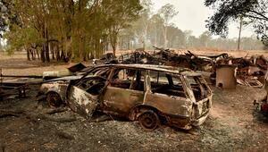 Avustralyada orman yangınları nedeniyle Yeni Güney Gallerde acil durum ilan edildi