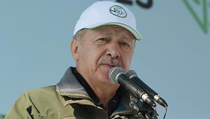 Son dakika... 81 ilde başladı Ankarada ilk fidanı Cumhurbaşkanı Erdoğan dikti