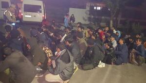 Kovalamacada durdurulan minibüslerden 69 kaçak göçmen çıktı