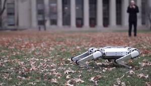 Mini çita: Ters takla atabilen robot