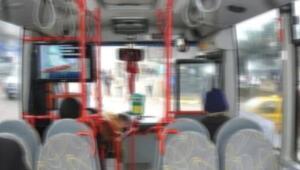 Otobüste tacize Yargıtay gerekçesi: Ses etmemiş tanık yok yanlış anlama