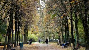 Brükselde sonbahar güzelliği