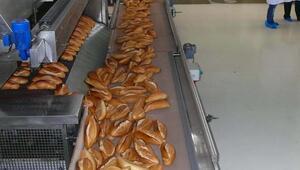 Her gün 270 bin ekmek israf ediliyor