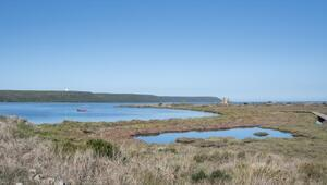80 yıllık ömür biçilen Sardunya Adası küresel ısınmaya direniyor