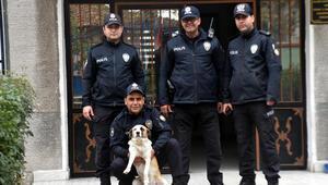 Polisin hayvan sevgisi