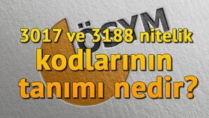 Nitelik kodu nedir 3017 ve 3188 nitelik kodlarının tanımı nedir
