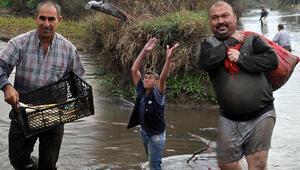 Ölü balıkları çuval ve kasalarla evlerine götürdüler