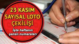 Sayısal Loto 5 milyon TL devretti MPİ Sayısal Loto 23 Kasım çekiliş sonuçları ve sorgulama ekranı
