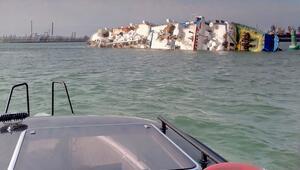 Karadenizde alabora olan geminin ambarında 14 bin koyun mahsur kaldı