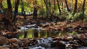 Saklı cennet İdilli Vadisi'nde sonbahar güzelliği