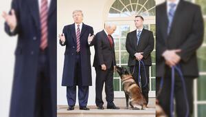 Bağdadi baskınına katılmıştı, o köpeğe madalya