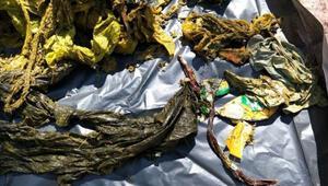 Geyiğin midesinden plastik poşet ve erkek iç çamaşırı dahil 7 kilo çöp çıktı
