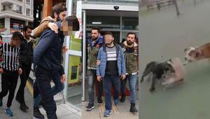 İstanbuldaki isyan ettiren vahşetin cezası belli oldu