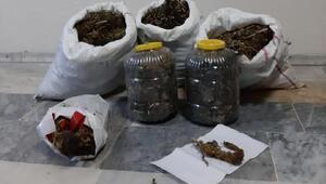 Kütahya'da uyuşturucu operasyonunda 3 gözaltı