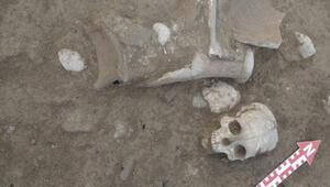 Şapinuva Antik Kentinde 3500 yıllık insan kafatası ve uyluk kemiği bulundu