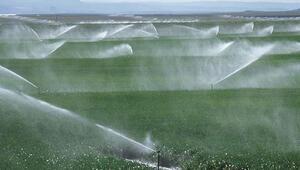 Ankarada sulama 119 milyon lira katkı getirdi