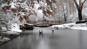 Kış cennetinde kar yağışı güzel görüntüler oluşturdu