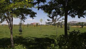 Aksaray Üniversitesi, en çevreci üniversiteler listesinde dördüncü sırada