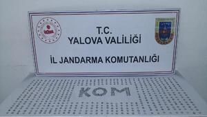 Yalova'da 611 adet sikke ele geçti