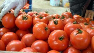 TZOB Başkanı Bayraktar: Dünyada domates üretiminde üçüncü sıradayız