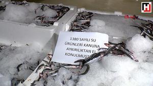 Marmara Denizinde balık avı denetimi
