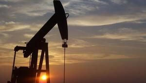 Meksikadan dev petrol keşfi