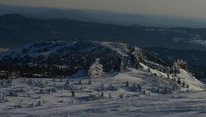 Rusyanın Kuzey Kutbu'na hava üssü kurduğu iddiası