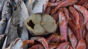 Balık satın alırken dikkat Palamutta büyük hile
