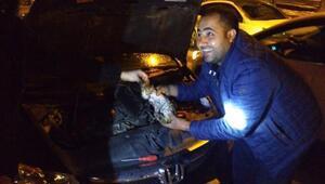 Aracın motorunda sıkışan yavru kedi kurtarıldı