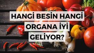 Hangi besin hangi organa iyi geliyor