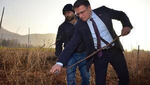Vali Balcı: Tokatın meyveciliğine katkı sağlayacağız
