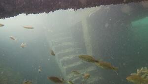 Rumkalenin su altında kalan eşsiz güzellikleri ziyarete açılacak