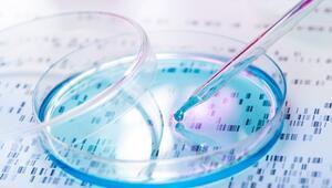 Kök Hücre Tedavisi Kozmetik Amaçlarla Kullanılabilir Mi