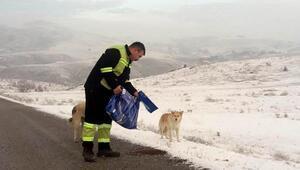 Altındağ Belediyesinden, sokak hayvanlarına mama desteği