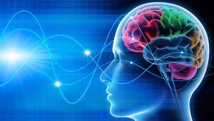 Nöropazarlama satın alma sürecini nasıl etkiliyor